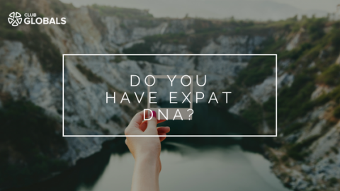Do You Have Expat DNA?
